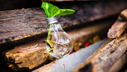 Innovation- light bulb
